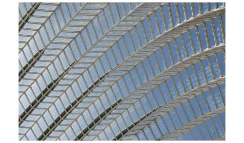 glass ceiling of consciousness