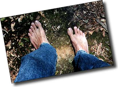 Feel the Earth Move Beneath Your Feet